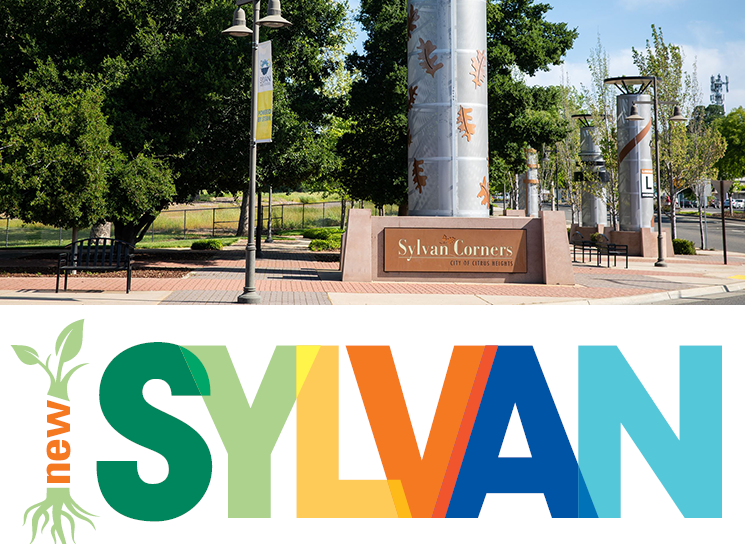 new sylvan news flash image