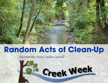 "Image of a creek bed that says ""Random Acts of Clean-Up"""