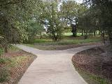 Creek Corridor Path - 1
